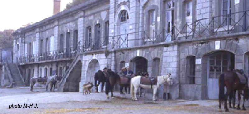 Comboire+chevaux_jpg2